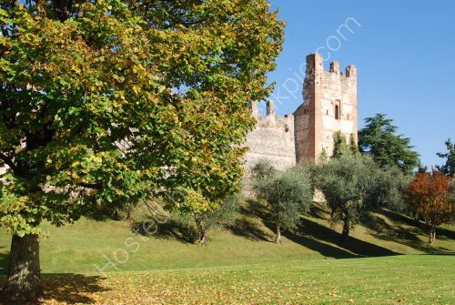 The Scaligera Castle at Lazise