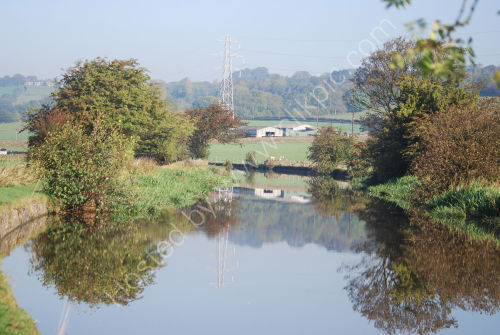 Rural and autumnal reflections