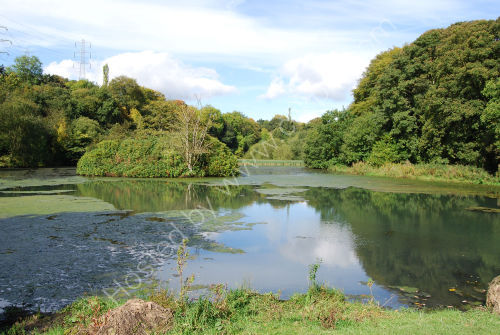 Sunny Vale Lake