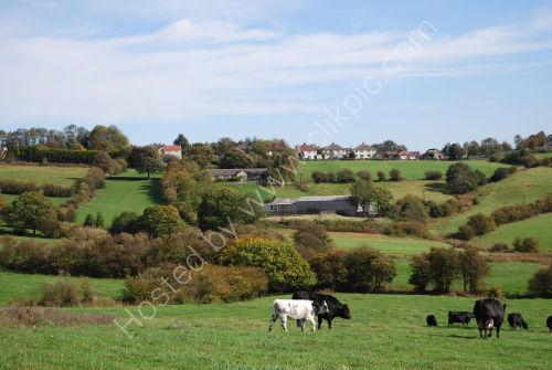 Rural scene near Scholes