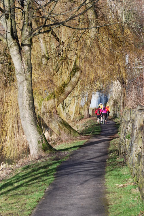 Cycling along the towpath