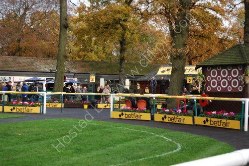 Haydock Park, autumn 2013