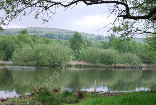 Hollingworth Lake in Spring