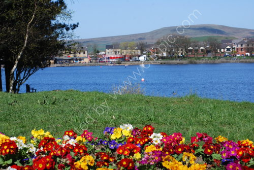 Spring border lakeside