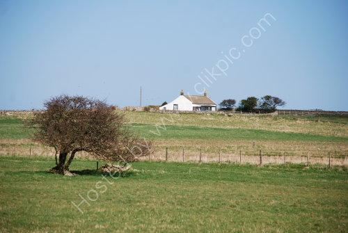 Quiet area on Lindisfarne