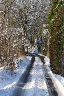Tracks to Sunny Vale