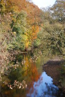 Reflections on the River Aire