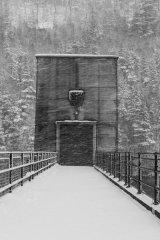 Solitude in the Snow