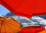 Alpine Parasols