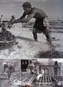 Labourers Madagascar