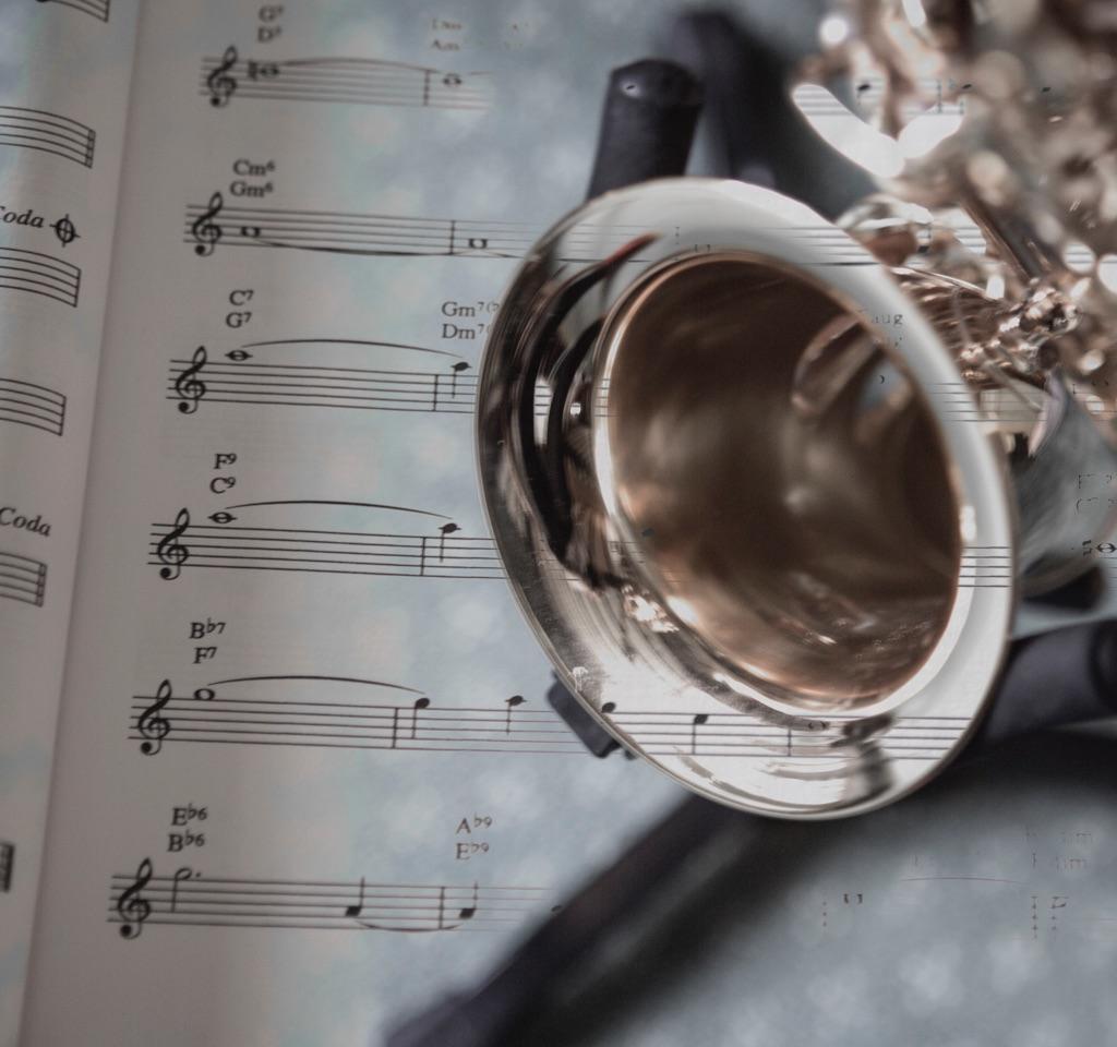 3013 - sax & music MX
