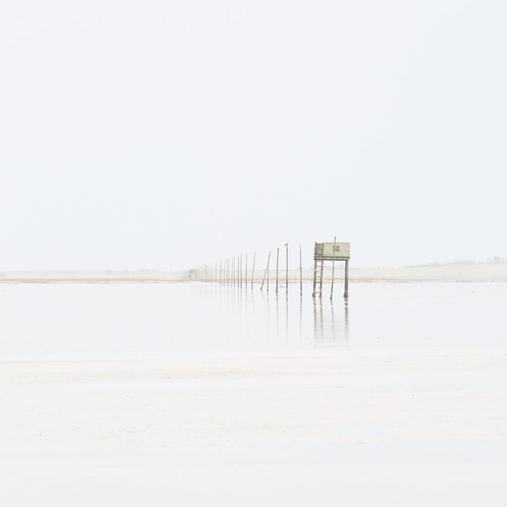 2010 - pilgrim poles one