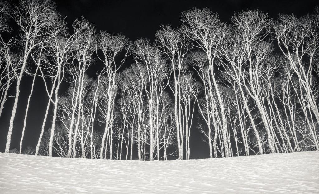 Hokkaido 029