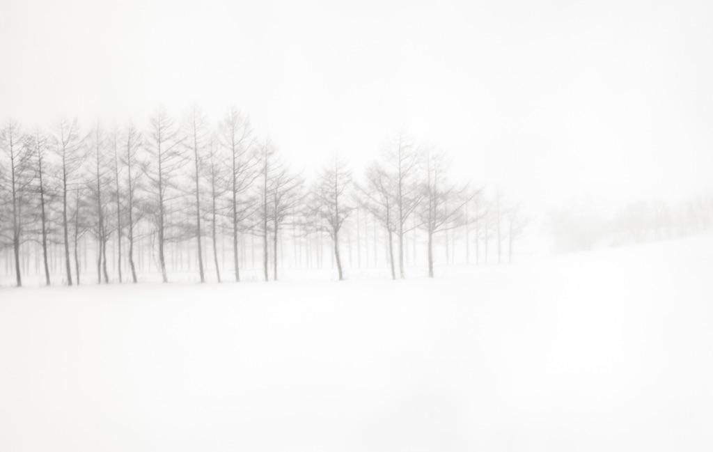 Hokkaido 031