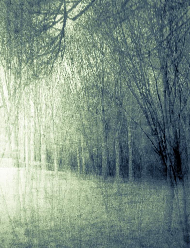 4008 - peppard woods 'sketch' ICM