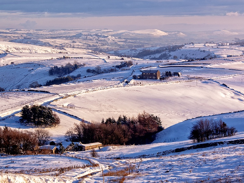 Com Snow in the Valley by Anne Millett