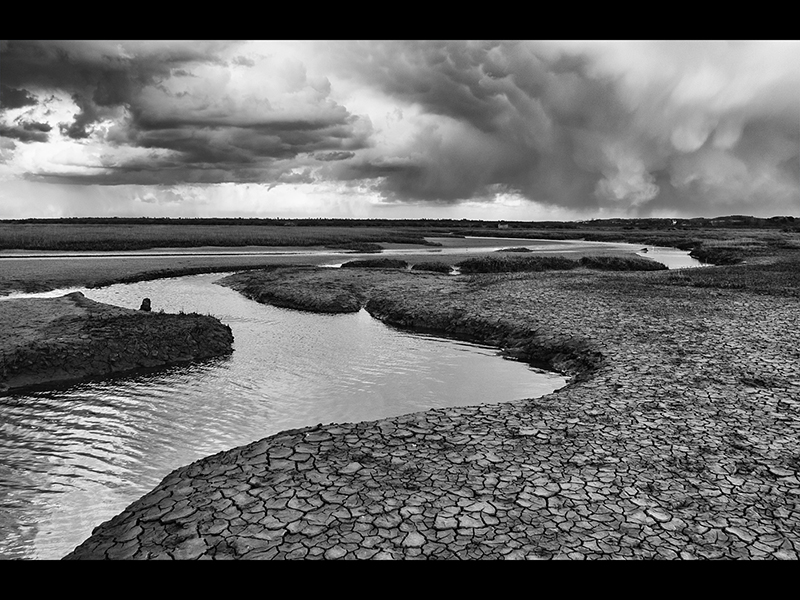 Com Storm Approaching, Cley Marshes by David Thompson