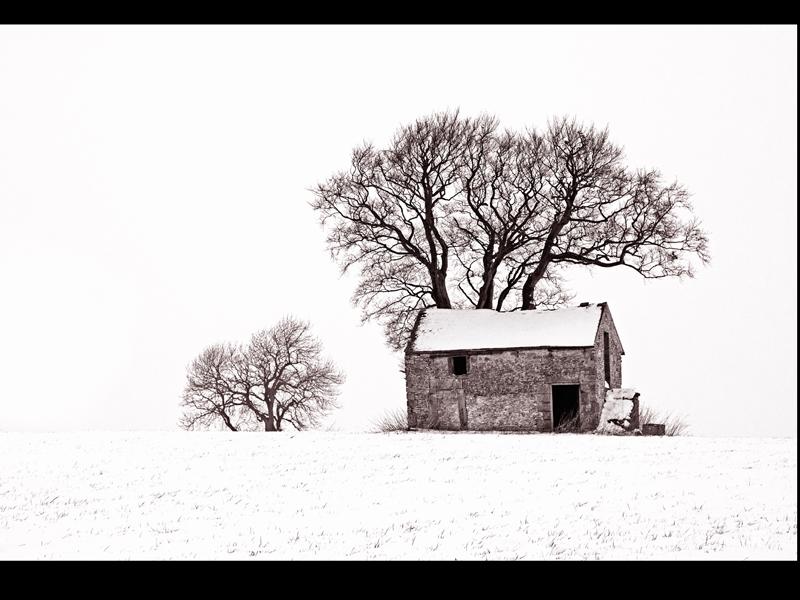 Com White Winter by Robert Falconer