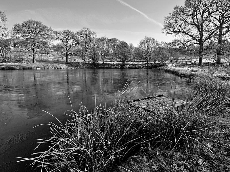 Frosty Morning by Stephen Mallender HC Mono