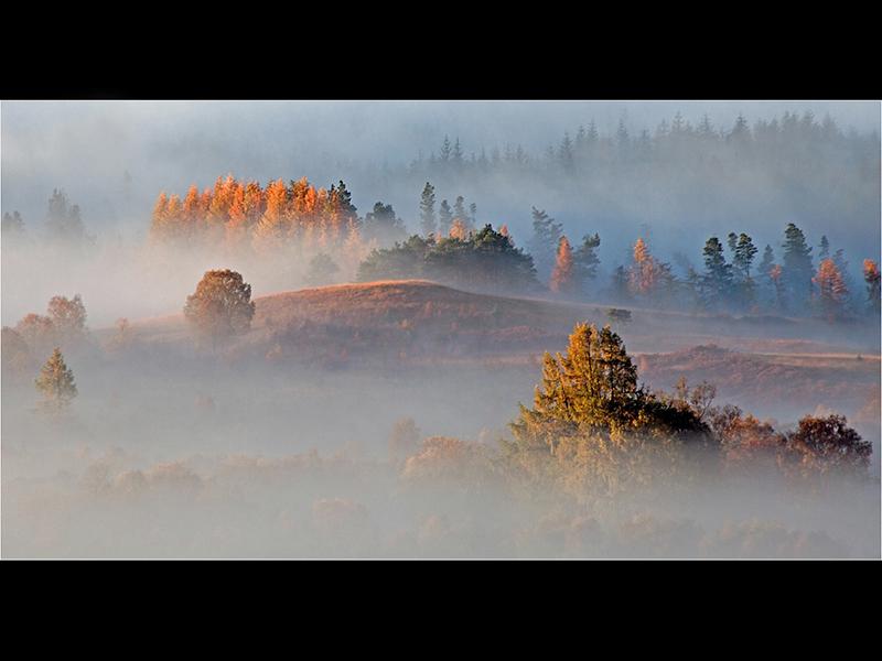 HC Highland Mist by Robert Falconer