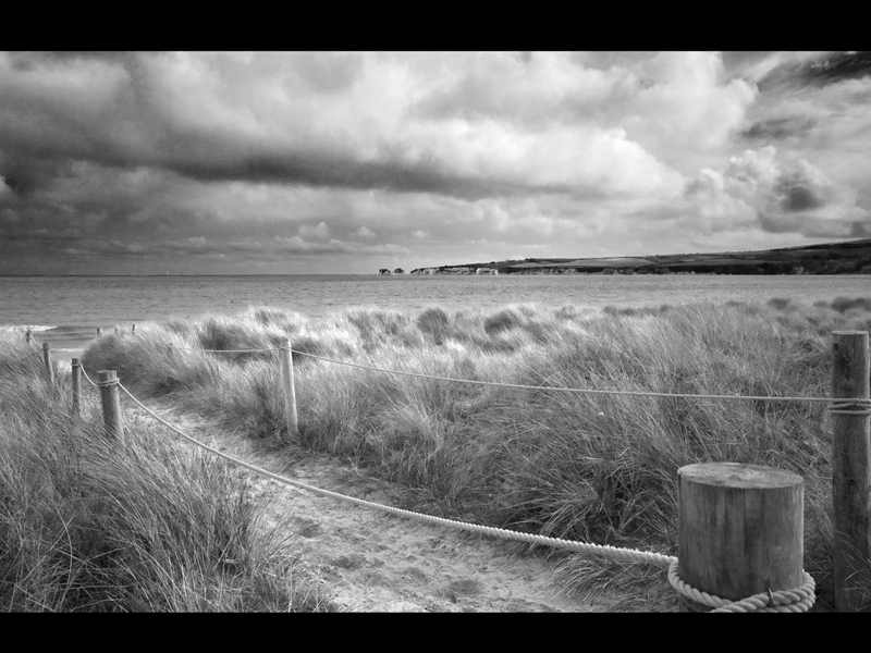 Pathway to the Sea by Sue Wilson TOP mono