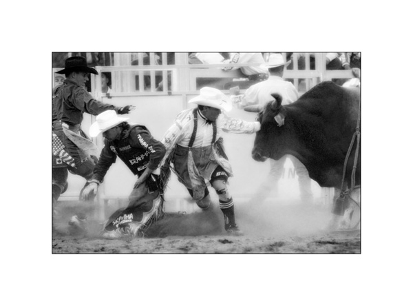 Rodeo Action in Mono