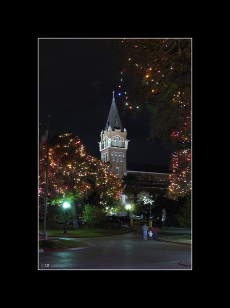 Xmas Lights -San Antonio