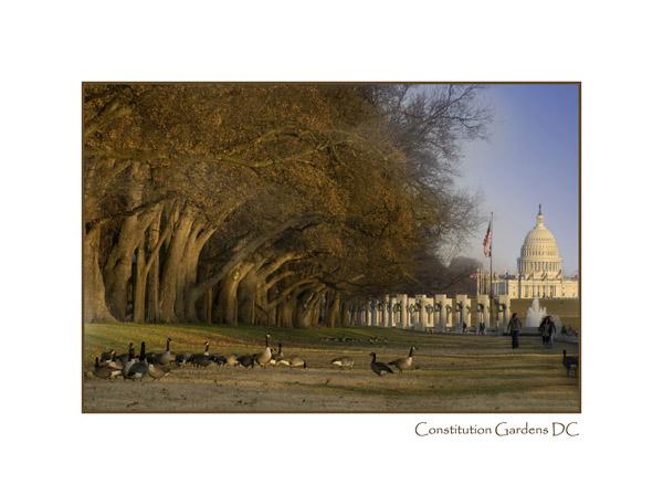 Constitution Gardens Washington DC