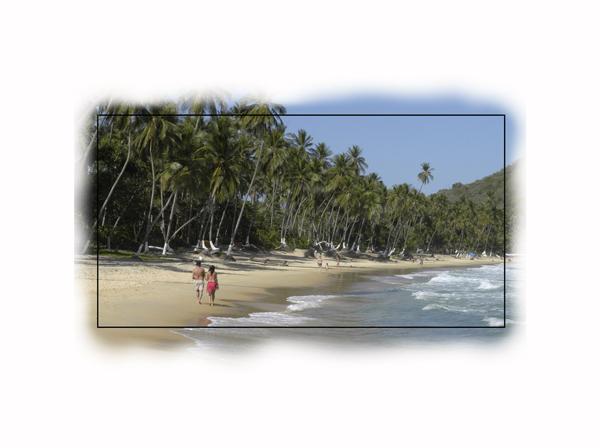 Choroni Caribean Beach