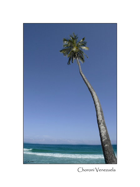 Choroni view of the Caribean