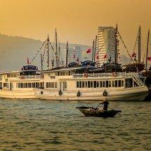 Vietnamese Harbour
