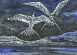 Dancing Tern Mixed Media Framed £125 23x16 2
