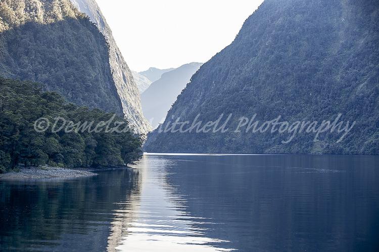 Morning stillness - Hall Arm, Doubtful Sound