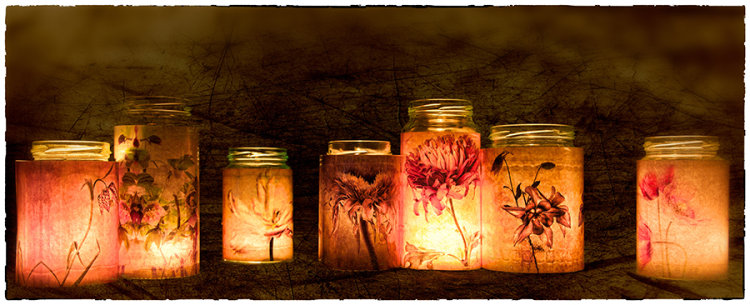 Flower Pots - Di Wilkins LRPS