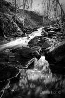 The stream flows...