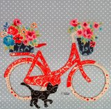 Dotty about bikes