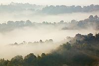 Autumn layers under Plesivica hill, Croatia