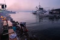 """Tunuara"" festivity in place Kali, island Ugljan, Dalmatia, Croatia"