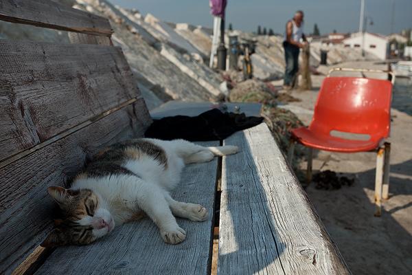 High noon nap in Fazana