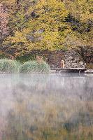 Foggy morning on lake