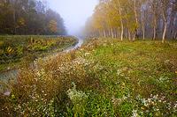Mirna river in autumn, Istria, Croatia
