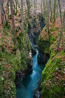 Deep Gorge on river Mostnica, National Park Triglav, Gorenjska, Slovenia