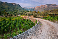 Old road to village Pitve, Island Hvar, Dalmatia, Croatia
