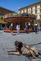 Caroussel on Piazza della Repubblica in Florence, Tuscany, Italy