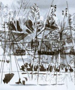 Graham Bell's permaculture garden in winter.