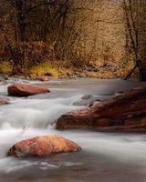 Autumn Stream, Sedona