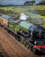 Tornado Steam Train 60163