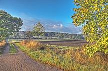 Countryside Suffolk