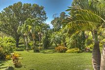 Renwick's Garden