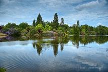 Sheffield Park Garden Lake 3